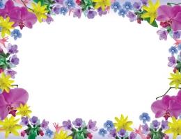 Фотопечать на рольшторах - Цветы_690